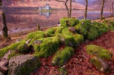 Scotland banks of Loch Awe