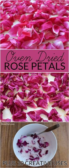 1000 ideas about rose petals craft on pinterest pressed