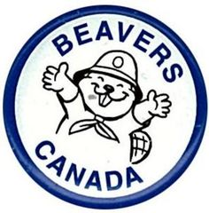 Beaver Scouts from Ireland   Beaver Scouts (Canada)   Pinterest ...