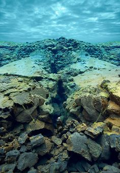 """These images were created from photographs I made of underwater landscapes at Silfra, a unique location in Iceland."""""""
