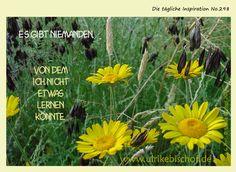 Die tägliche Inspiration No.298  www.inspirationenblog.wordpress.com  www.ulrikebischof.de