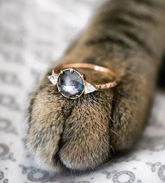 I'm 100% sure I'd say yes ✨. Would you? A rose cut Grey Sapphire ethically sourced from Montana, USA with reclaimed vintage diamonds in recycled rose gold. ✨