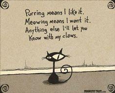 """""""Purrr"""" vuole dire """"Mi piace"""". """"Miao"""" vuol dire """"Lo voglio"""". Tutto il resto te lo comunicherò con le unghie."""