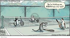 The Cartoonist Group - Dan Piraro :: Bizarro :: :: Image Number: 86039 :: You're kidding me. NOBODY has a fur ball? Funny Cartoons, Funny Comics, Funny Cats, Cartoon Humor, Cartoon Cats, Crazy Cat Lady, Crazy Cats, Gary Larson Comics, Bizarro Comic
