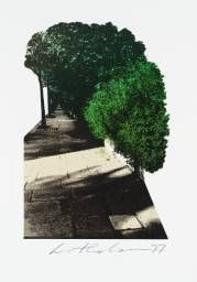 Ivor Abrahams 'Untitled [from the book 'Oxford Gardens: a Sketchbook' by Ivor…