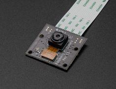 NEW PRODUCT – Raspberry Pi NoIR Camera Board – Infrared-sensitive Camera @raspberry_pi #raspberrypi #piday « adafruit industries blog