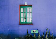 Walls of blue at the Frida Kahlo Museum.