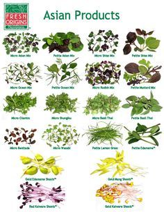 microgreens list - Google Search
