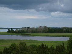 Die Kormorankolonie von Orjaku, Estland