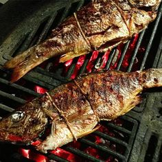 Snapper!  : @hooked_on_bbq