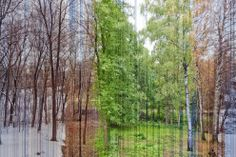 This image consists of 3888 images taken from the same spot through one whole year, stitched together in one photo.