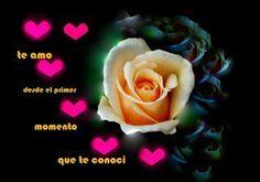 Imagen de amor de una rosa con corazones rosados