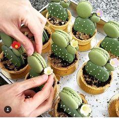 Super criativo #cactus  com macarons By @rawsucculents #macarons #🌵#ideias #ideas