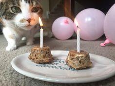 Birthday cakes for the birthday girl http://ift.tt/2pCX8hv