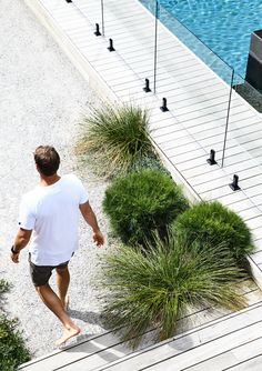 Indigenous plantings and a coastal aesthetic help blur the boundaries between a new garden and its beachside location in this striking home. The collaboration between homeowner and builder of the house and garden, Daryl Powell of Made Build and landscape Coastal Gardens, Beach Gardens, Outdoor Gardens, Indoor Outdoor, Landscaping Trees, Coastal Landscaping, Pool Fence, Garden Pool, Fruit Garden