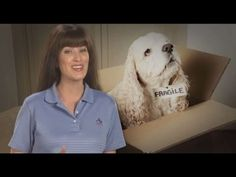 How to Move Pets   Video   Moving Advice from Atlas