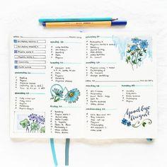 Resultado de imagem para aberturas de cadernos coloridas tumblr