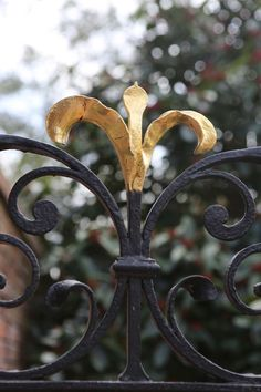 Iron Gate @Lee Semel Homan Palace in New Bern, NC, featured in our August issue.