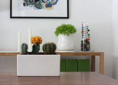 Tips for Buying Indoor Plants >> http://blog.diynetwork.com/maderemade/2015/02/11/tips-indoor-plant-shopping/?soc=pinterest