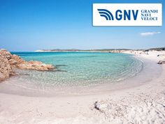 In #CostaParadiso near #PortoTorres you can find a #white #sand #beach called #RenaMajori with a clear turquoise #sea.  Discover #GNV routes from/to #Sardinia here: http://www.gnv.it/en/ferries-destinations/porto-torres-ferries-sardinia.html