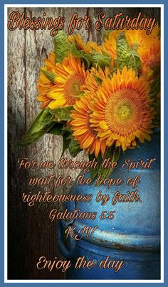 "SATURDAY BLESSINGS: Galatians 5:5 (1611 KJV !!!!) "" For we through the Spirit wait for the hope of righteousness by faith."" ENJOY THE DAY !!!! Biblical Womanhood, Righteousness, Happy Saturday, True Words, Word Of God, Bible Quotes, Blessings, Jesus Christ, Christianity"