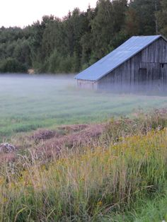 Finnish country side Finland Country, Helsinki, Nature Photos, Countryside, Norway, Scenery, Sheds, Barns, Terrarium