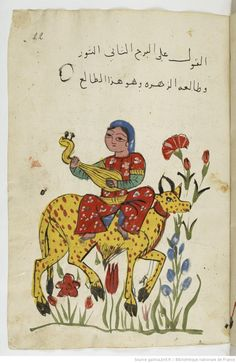 Manuscript-Astrology Manuscript (Taurus), Gallica, BnF