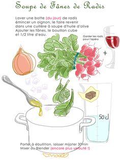 soupe-de-fanes-de-radis-72
