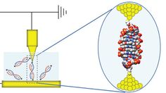 Single molecule diode has been created from DNA - Future uses in nanoscale circuits #DNA #science #molecules #nanotech
