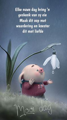 Good Morning Greetings, Good Morning Wishes, Good Morning Quotes, Lekker Dag, Cute Piglets, Afrikaanse Quotes, Goeie More, Morning Blessings, Baby Pigs