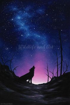 Affordable Prices - Wildlife art prints - Landscape art prints - Hand-signed - Shop the dozens of limited edition art prints by award winning artist Chuck Black. Night Sky Painting, Wolf Painting, Galaxy Painting, Galaxy Art, Galaxy Wolf, Diy Canvas Art, Canvas Artwork, Desenhos Cartoon Network, Wolf Canvas