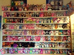 My collection - Beanie Boo collection website!