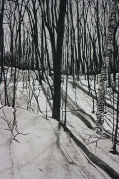 Woods - Jeanne Amato