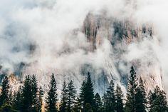 """ravivora: """" a shy El Capitan photo by Ravi Vora """""""