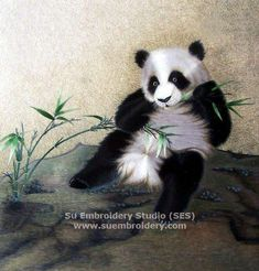 Panda, silk hand embroidered picture, China suzhou silk embroidery art, silk thread artwork, needle painting, Su Embroidery Studio