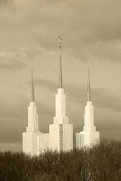 Washington DC Temple 20x30 Digital File by AltusPhotoDesign, $15.00,  Great gift idea!  Christmas is coming.  Again!
