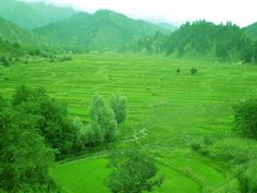 BEAUTIFUL PLACES TO VISIT : Leepa Valley Azad Kashmir