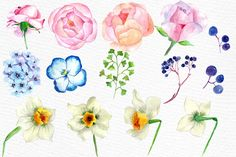 Watercolor wedding flowers clipart by LeCoqDesign on @creativemarket