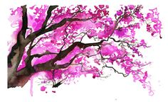 Watercolor Japanese Cherry Blossom Tree Painting, Jessica Durrant