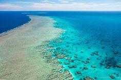 Mark Seabury Photography | Great Barrier Reef, QLD Australia