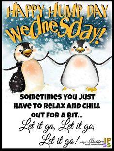 Happy Wednesday!🤗🐪 #LetitGo #Chill Wednesday Morning Greetings, Wednesday Morning Quotes, Wednesday Humor, Thursday Quotes, Wednesday Motivation, Morning Greetings Quotes, Morning Humor, Good Morning Quotes, Let It Go