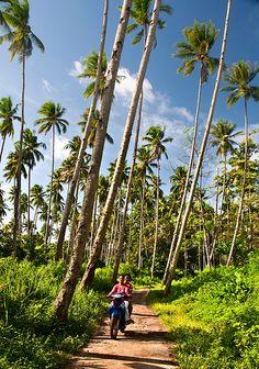 Pulau Bunaken Indonesia