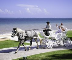 A fairty tale, horse carriage wedding at Moon Palace in Cancun.