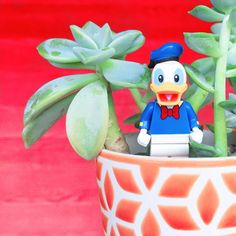5 Ways To Step Up Your Disney Plant Game | Ariel and Alder