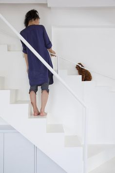 Modern Home Features A Staircase Designed Specifically For Small Pets   My  Modern Met