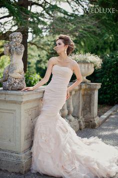 The Secret Garden - WedLuxe Magazine Wedding Pics, Wedding Events, Wedding Gowns, Dream Wedding, Wedding Day, Wedding Shit, Wedding 2015, Bridal Gown, Wedding Things