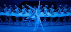 Swan Lake by Bolshoi Ballet - an enchanting dance masterpiece of love, deception, and drama, with 100 dancers performing onstage.Don't miss it!!