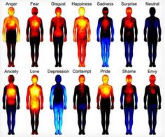 'Body Atlas' shows where emotions hit the hardest pic.twitter.com/P1MOaWqLvp