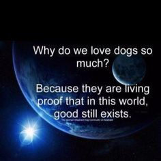 Dogs are living proof that in this world, good still exists.