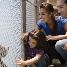 10 Questions to Ask When Getting a Dog from a Shelter | WOOFipedia by The American Kennel Club